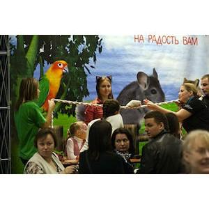 Завершился восьмой выставочный сезон «ЗооПалитры»