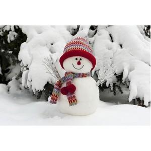 Как весело отпраздновать день рождения зимой?