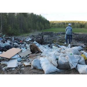 Сыктывкар исключен из экологического рейтинга ОНФ по причине непредоставления информации