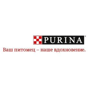 Бренд Purina принял участие в фестивале «Галафест»