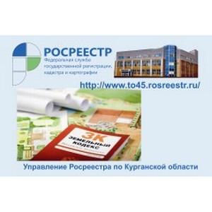 Лидером по предоставлению материалов проверок является Далматовский район