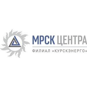 Курскэнерго поздравило Общественное объединение - «Всероссийский Электропрофсоюз» с 50-летием