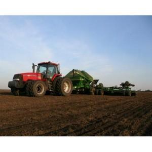 Прогнозы на урожай 2016