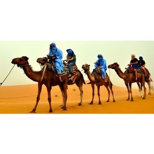 Арабский регион: деньги спасают деньгами и ...золотом!