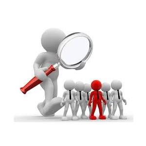 Определены риски и сроки плановых антимонопольных проверок для ИП и юридических лиц