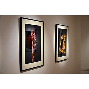 В Москве состоялась уникальная выставка «LUX» французского фотохудожника Дани Оливье