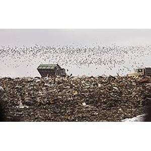 «ГазЭнергоСтрой» получила заключение по объекту  полигон твердых бытовых отходов «Игумново»