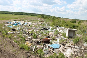 В Мордовии активисты ОНФ борются с несанкционированными свалками