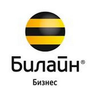 «Билайн» Бизнес в Казани провел звездный мастер-класс для корпоративных клиентов