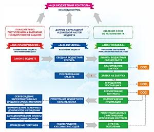Централизованная система управления финансами Амурской области: история успеха