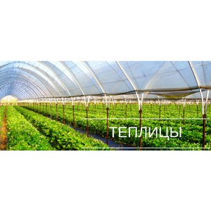 Интернет-магазин «ПланетаТеплиц»
