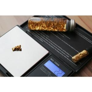 Весна золотого рынка: цены перешли границу 1240 долларов!