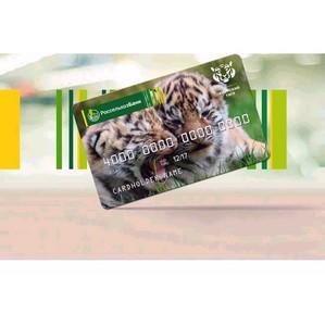 Свыше 2 тысяч клиентов  Белгородского филиала Россельхозбанка оформили карты «Амурский тигр».