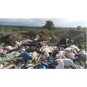 Активисты ОНФ держат на контроле ликвидацию несанкционированных свалок в Воронежской области
