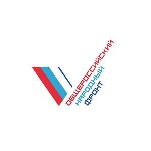 Тамбовский штаб ОНФ подвел итоги за первое полугодие 2016 г. и наметил новый план работы