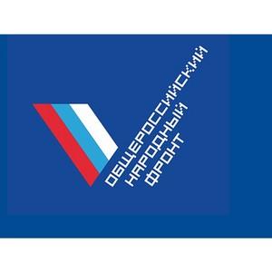 ОНФ усомнился в целесообразности закупки автомобиля за 4 млн руб
