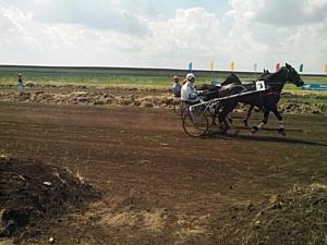 Сельские спортивные игры «Золотой колос Оренбуржья» проходят при поддержке БФ «Сафмар»