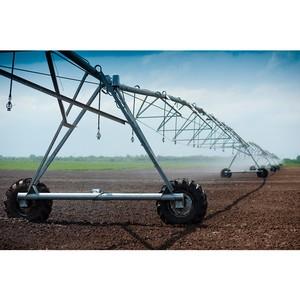 Агродивизион холдинга «Солнечные продукты» подвел итоги посевной кампании.