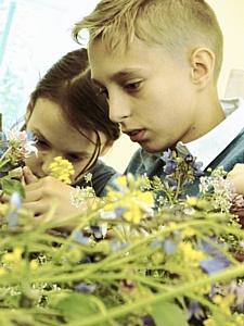 Культурно-образовательный перформанс для детей и подростков с особенностями развития