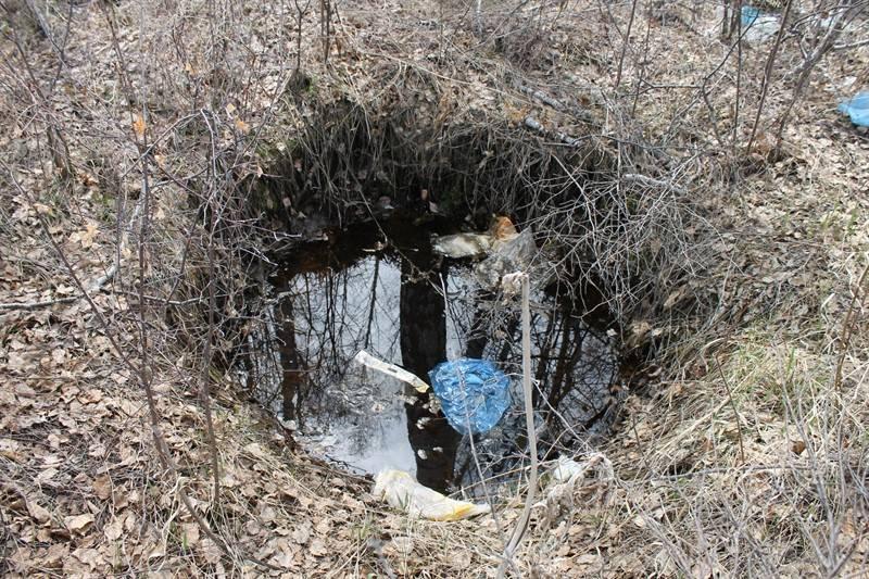 Челябинские эксперты ОНФ выявили нарушения экологического законодательства в Сосновском районе
