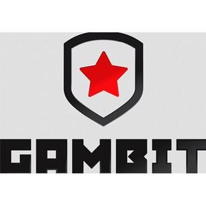 SteelSeries стала спонсором команды Gambit Gaming