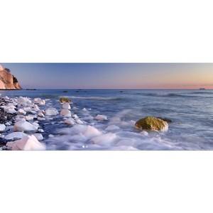 Обсуждение проблем экологии на форуме «Природа без границ»