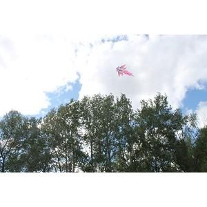 Команда «Молодежки ОНФ» в Оренбургской области организовала фестиваль воздушных змеев