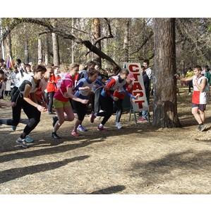 Студенты УрФЮИ примут участие во Всероссийском забеге «Кросс нации-2013»