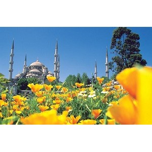 Отдых в Турции может быть роскошным с RentinTurkey и PayOnline