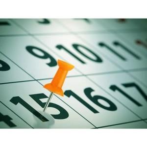 15 марта – последний день уплаты страховых взносов в ПФР за февраль