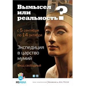 ТРЦ «М5 Молл»:  Экспедиция в царство мумий.