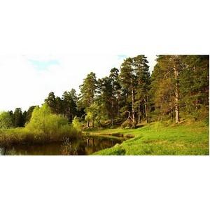 ОНФ проведет  Межрегиональную экологическую конференцию в ПФО и УФО