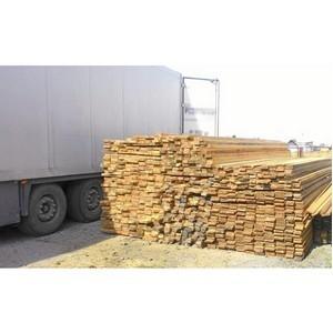 Новосибирская таможня пресекла контрабанду лесоматериалов