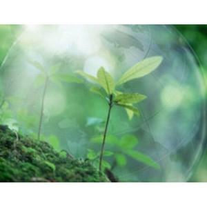 Экологические услуги от «ЭкоАвтоАльянс»