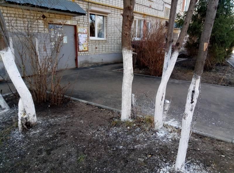 Активисты ОНФ в Мордовии провели субботник в одном из дворов Саранска
