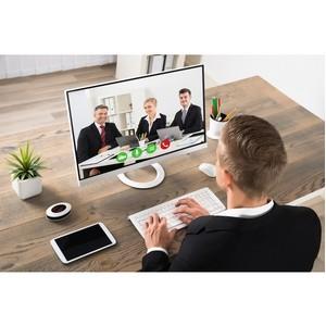 «Ростелеком» подключил к Web-видеоконференции «Электрические сети Удмуртии»