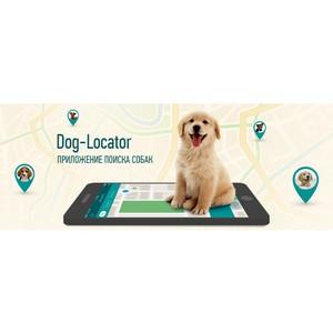 У приложения Dog Locator появились страницы в социальных сетях