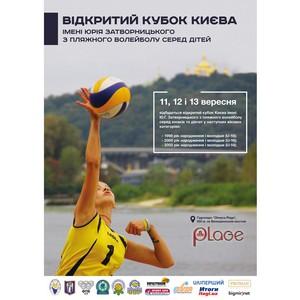 Открытый Кубок Киева имени Ю.Г. Затворницкого по пляжному волейболу