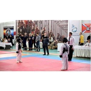 Открытый Фестиваль боевых единоборств Нижегородской области состоится 18 февраля