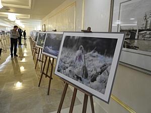 В Совете Федерации открылась фотовыставка при поддержке «Эталон-Инвест»
