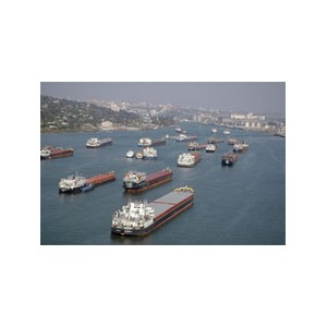 Ростовский порт не пропускает сорняки