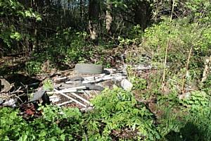 Активисты ОНФ обнаружили свалку отходов I класса опасности в черте Кирова