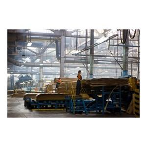 В Костромской области вырастет выпуск фанеры