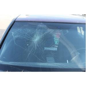 ОНФ требует привлечь к ответственности напавших на общественников