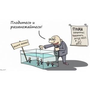 «Рубить с плеча»: в Петербурге могут уничтожить магазины шаговой доступности