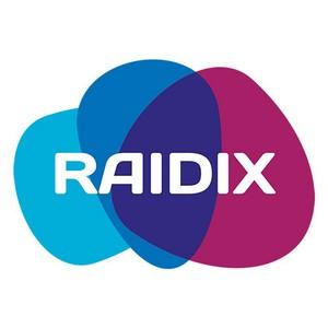 """Вебинар """"ПО Raidix для СХД: преимущества для партнеров, ценность для клиентов"""""""