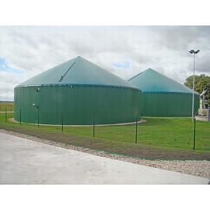 Спиртзавод в Молдове перейдет на биогаз