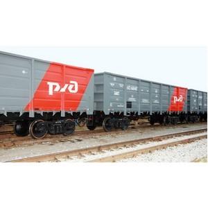 Поддержка государства при приобретении инновационных вагонов необходима