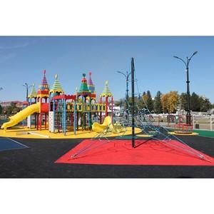 Активисты ОНФ установили контроль за детской площадкой на набережной реки Амур в Благовещенске