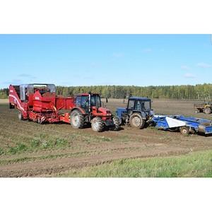 Россельхозбанк первым в 2018 году приступил к льготному кредитованию АПК